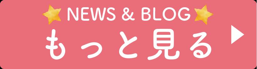 ニュースとブログボタン